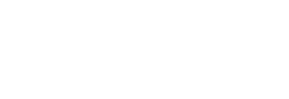 Wealth Management LLC